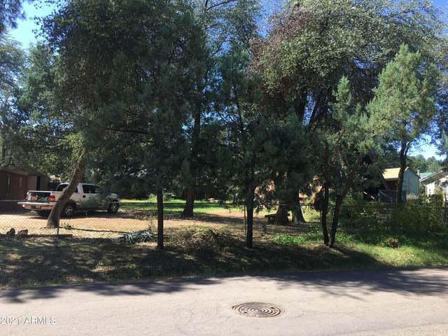 613 W Bridle Path Lane, Payson, AZ 85541 (MLS #6298398) :: Openshaw Real Estate Group in partnership with The Jesse Herfel Real Estate Group