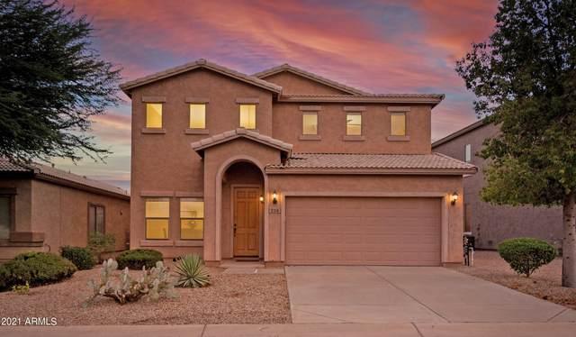 239 E Saddle Way, San Tan Valley, AZ 85143 (MLS #6298402) :: Power Realty Group Model Home Center