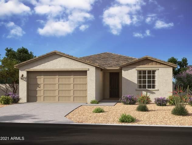 13408 W Lariat Lane, Peoria, AZ 85383 (MLS #6298462) :: Power Realty Group Model Home Center
