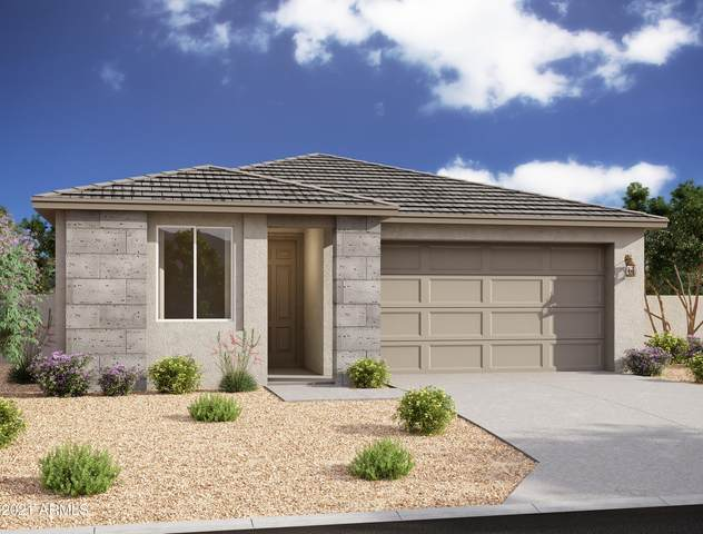 13413 W Tether Trail, Peoria, AZ 85383 (MLS #6298466) :: Power Realty Group Model Home Center