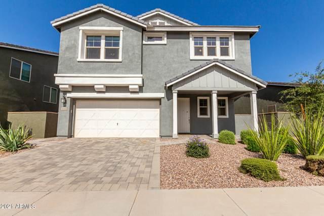 9906 E Acceleration Drive, Mesa, AZ 85212 (MLS #6298472) :: Power Realty Group Model Home Center