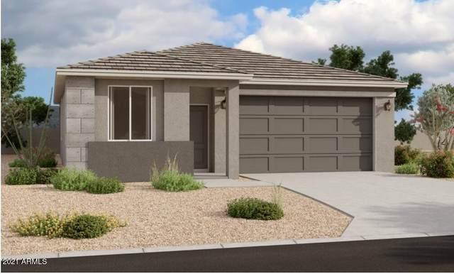 36005 W San Clemente Avenue, Maricopa, AZ 85138 (MLS #6298486) :: The Luna Team