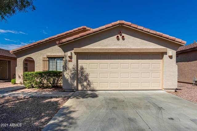16842 W Marshall Lane, Surprise, AZ 85388 (MLS #6298508) :: The Daniel Montez Real Estate Group