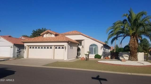 24433 S Mccorkindale Court, Sun Lakes, AZ 85248 (MLS #6298527) :: The Daniel Montez Real Estate Group