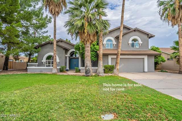 4644 E Kings Avenue, Phoenix, AZ 85032 (MLS #6298531) :: Power Realty Group Model Home Center