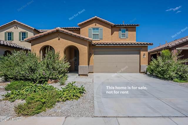 40754 W Patricia Lane, Maricopa, AZ 85138 (MLS #6298541) :: Power Realty Group Model Home Center