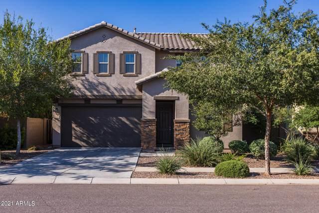 3640 E Sexton Street, Gilbert, AZ 85295 (MLS #6298551) :: Executive Realty Advisors