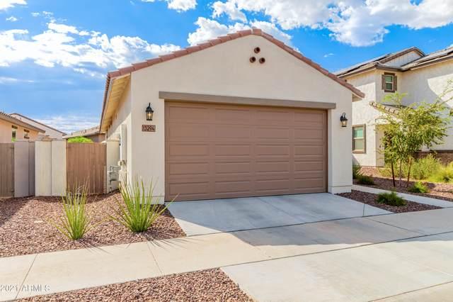 13294 N 143RD Drive, Surprise, AZ 85379 (MLS #6298558) :: Yost Realty Group at RE/MAX Casa Grande