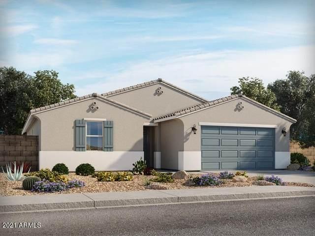 36926 N Andravida Drive, San Tan Valley, AZ 85140 (MLS #6298564) :: Team Faber