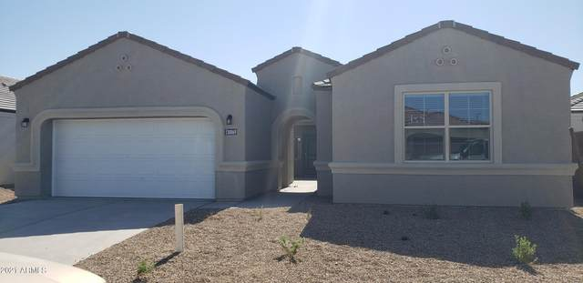 30069 W Clarendon Avenue, Buckeye, AZ 85396 (MLS #6298578) :: Executive Realty Advisors