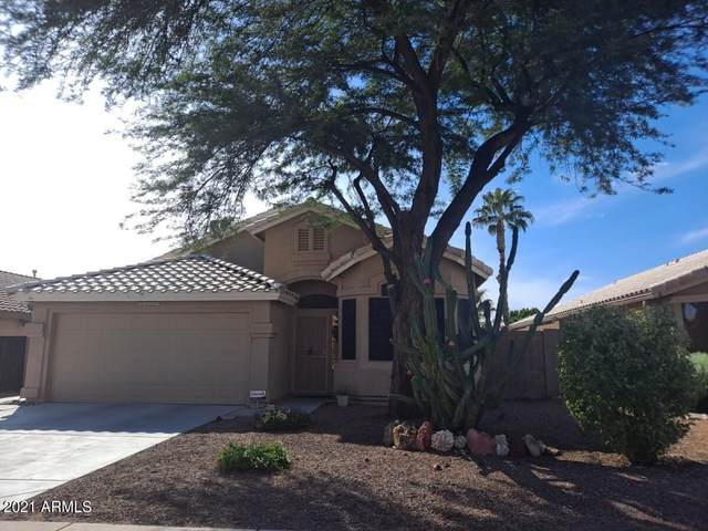 21324 N 87TH Drive, Peoria, AZ 85382 (MLS #6298619) :: Power Realty Group Model Home Center