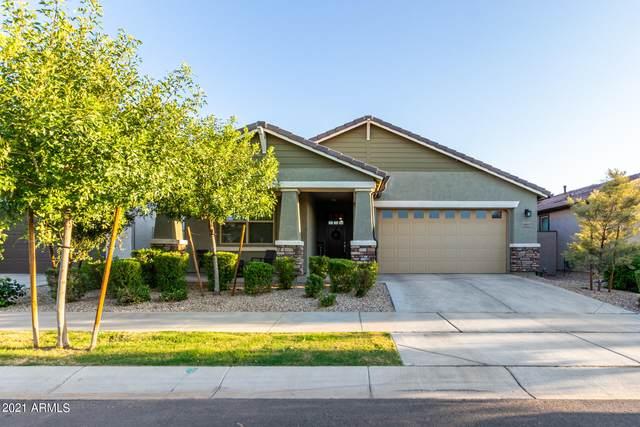 9943 E Thornbush Avenue, Mesa, AZ 85212 (MLS #6298629) :: Yost Realty Group at RE/MAX Casa Grande