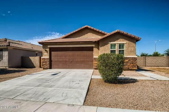 292 N Wilson Drive, Chandler, AZ 85225 (MLS #6298679) :: Power Realty Group Model Home Center