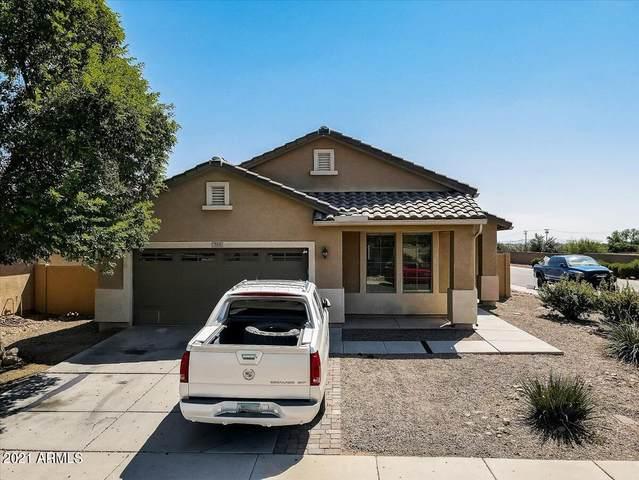 359 W Atlantic Drive, Casa Grande, AZ 85122 (MLS #6298681) :: Team Faber