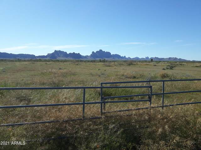 542XX W Baseline Road, Tonopah, AZ 85354 (MLS #6298724) :: The Newman Team