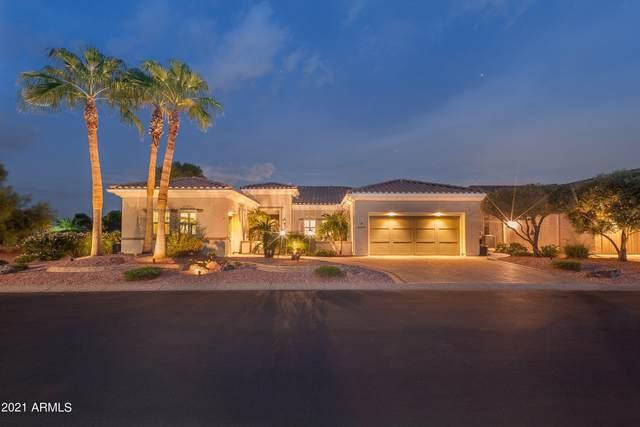 22523 N Galicia Drive, Sun City West, AZ 85375 (MLS #6298753) :: Walters Realty Group
