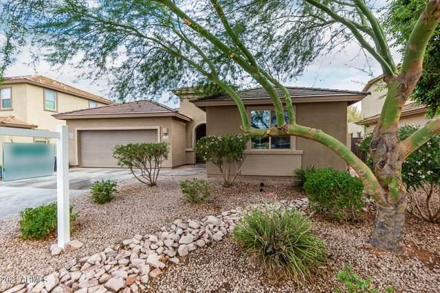 11238 E Sandoval Avenue, Mesa, AZ 85212 (MLS #6298779) :: My Home Group