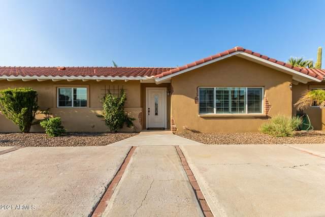 3702 E Arbor Circle, Mesa, AZ 85206 (MLS #6298785) :: Walters Realty Group