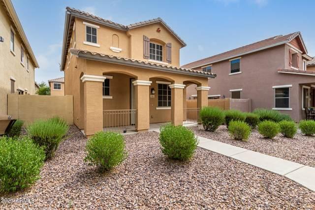 17805 N 114TH Lane, Surprise, AZ 85378 (MLS #6298801) :: Yost Realty Group at RE/MAX Casa Grande