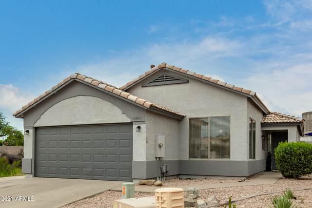 16841 N 18th Place, Phoenix, AZ 85022 (MLS #6298802) :: Walters Realty Group