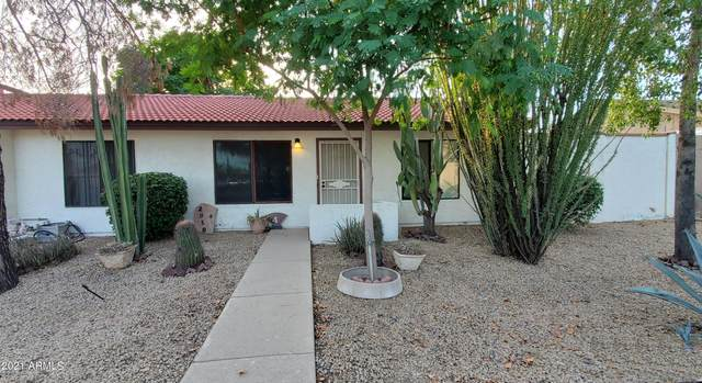 2850 E Waltann Lane #4, Phoenix, AZ 85032 (MLS #6298892) :: Yost Realty Group at RE/MAX Casa Grande