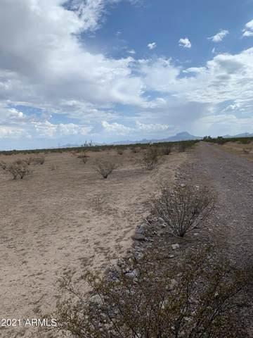 XXXX S 391 Avenue, Tonopah, AZ 85354 (MLS #6298893) :: The Daniel Montez Real Estate Group