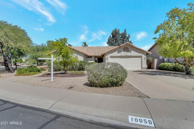 10959 W Tonopah Drive, Sun City, AZ 85373 (MLS #6298906) :: My Home Group