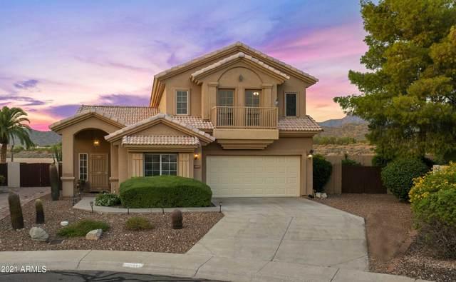 10875 N 118TH Way, Scottsdale, AZ 85259 (MLS #6298931) :: My Home Group