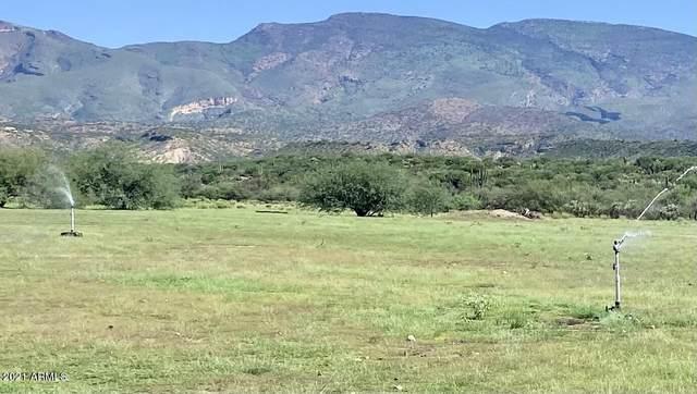 XXXX Sr 77, Globe, AZ 85501 (MLS #6298976) :: The Daniel Montez Real Estate Group