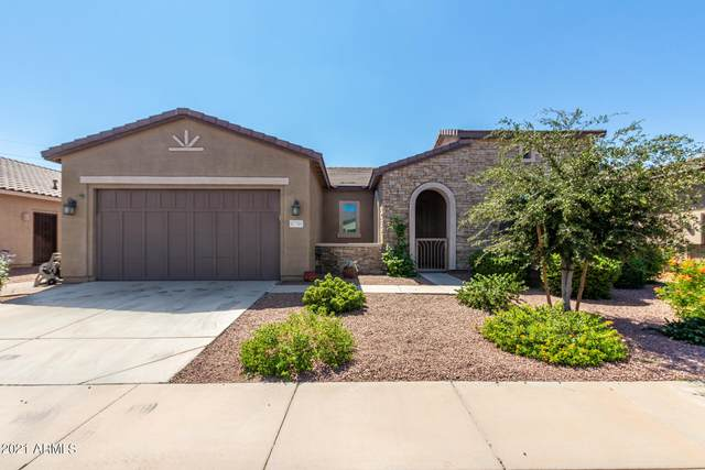 41709 W Cribbage Road, Maricopa, AZ 85138 (MLS #6298997) :: My Home Group