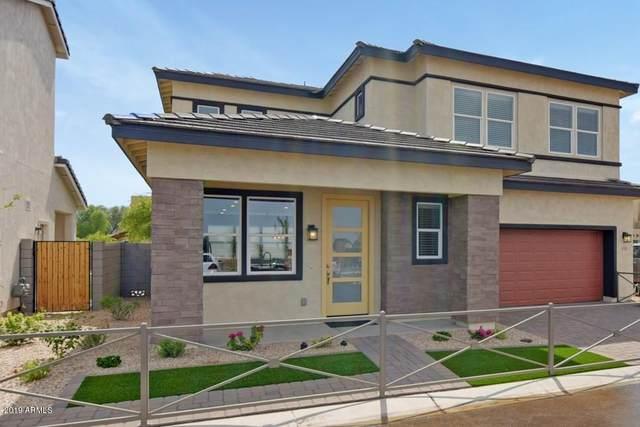 2095 S Saguaro Drive, Apache Junction, AZ 85120 (MLS #6299049) :: My Home Group