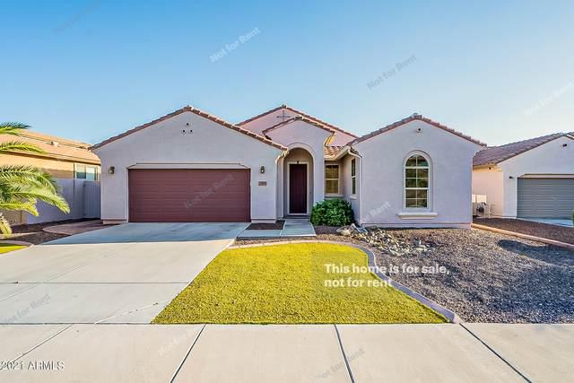 1891 W Pelican Drive, Chandler, AZ 85286 (MLS #6299116) :: The Daniel Montez Real Estate Group