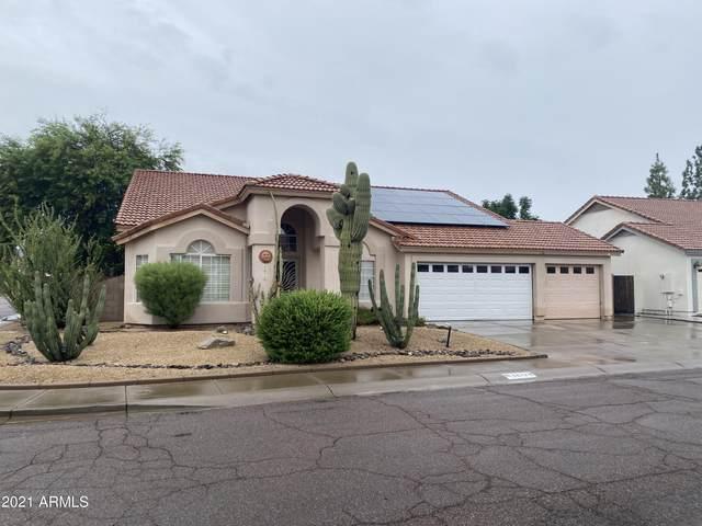 3872 W Calle Lejos, Glendale, AZ 85310 (MLS #6299141) :: The Daniel Montez Real Estate Group