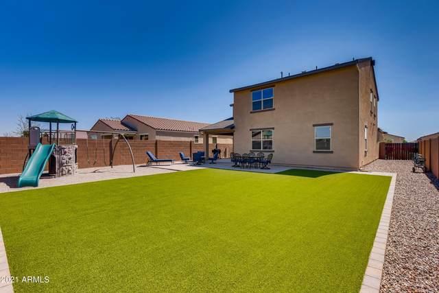 40102 W Brandt Drive, Maricopa, AZ 85138 (MLS #6299146) :: Elite Home Advisors
