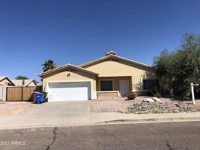 16633 N 18TH Street, Phoenix, AZ 85022 (MLS #6299215) :: Elite Home Advisors