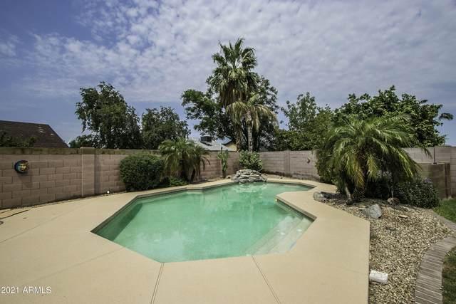 6126 N 86TH Drive, Glendale, AZ 85305 (MLS #6299216) :: Yost Realty Group at RE/MAX Casa Grande