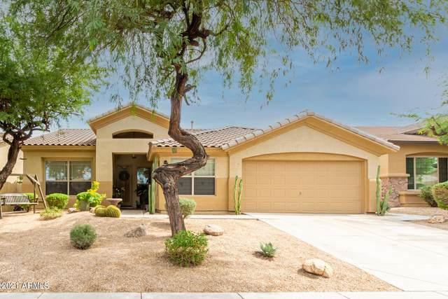 11333 S Coolwater Drive, Goodyear, AZ 85338 (MLS #6299229) :: Elite Home Advisors