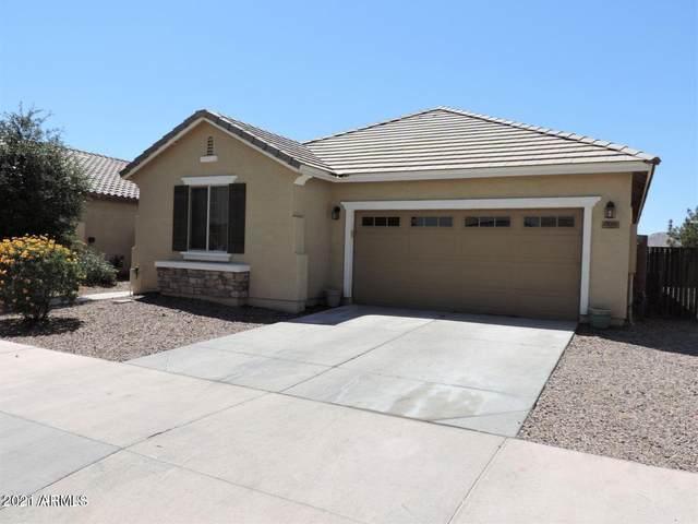 21021 E Pecan Lane, Queen Creek, AZ 85142 (MLS #6299287) :: Yost Realty Group at RE/MAX Casa Grande