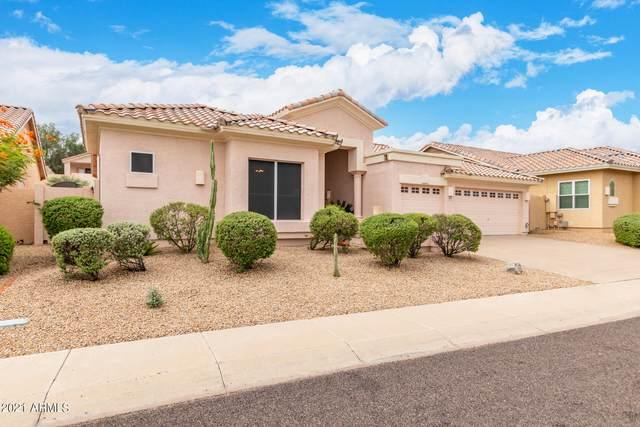 1713 E Kathleen Road, Phoenix, AZ 85022 (MLS #6299290) :: Elite Home Advisors