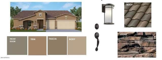 13218 W Desert Forest Trail, Peoria, AZ 85383 (MLS #6299316) :: Elite Home Advisors