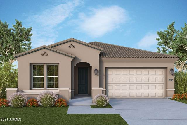 13225 W Horsetail Trail, Peoria, AZ 85383 (MLS #6299345) :: Elite Home Advisors
