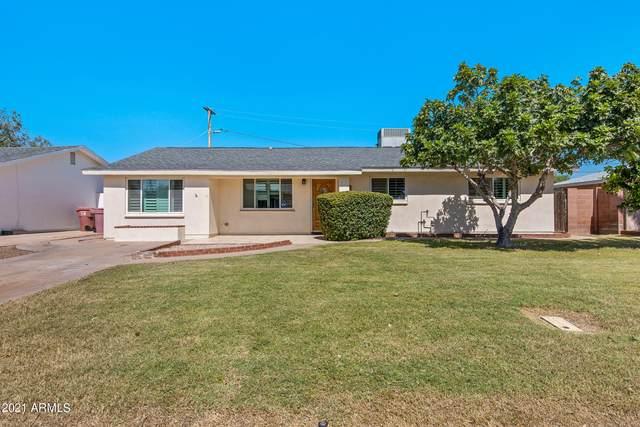 6528 E 2ND Street, Scottsdale, AZ 85251 (MLS #6299349) :: The Daniel Montez Real Estate Group