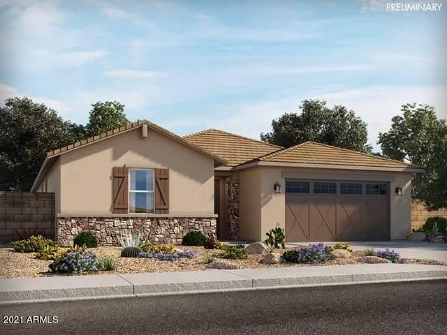 40669 W Williams Way, Maricopa, AZ 85138 (MLS #6299363) :: Elite Home Advisors