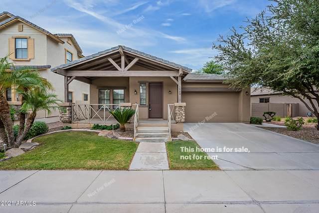 1429 W Pelican Court, Chandler, AZ 85286 (MLS #6299394) :: Elite Home Advisors
