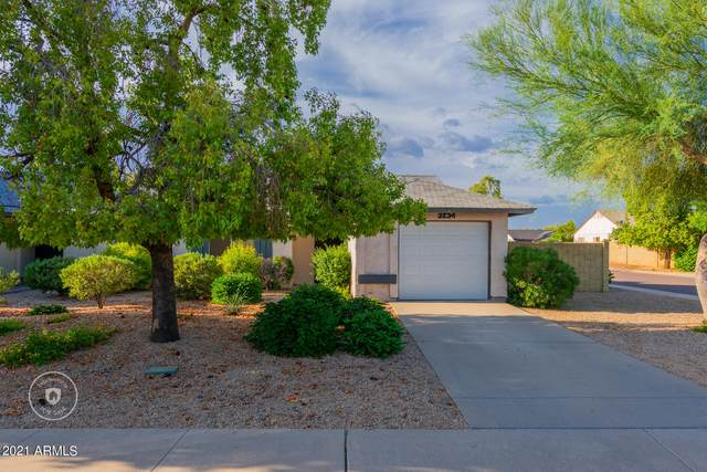 3234 W Mohawk Lane, Phoenix, AZ 85027 (MLS #6299417) :: The Dobbins Team