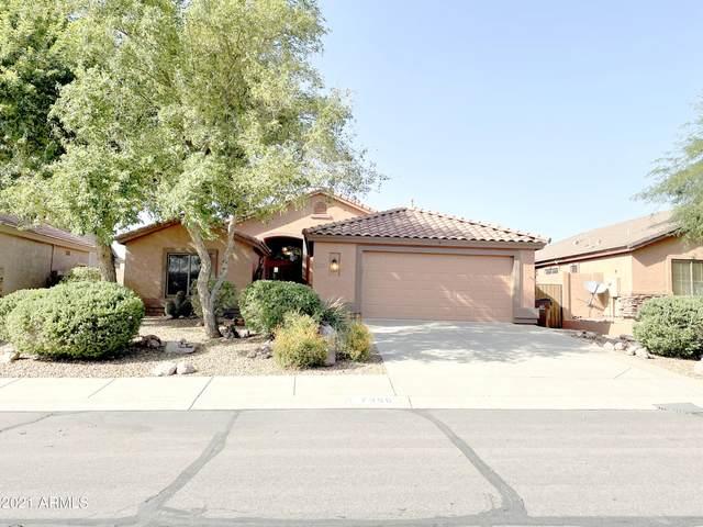 7356 E Desert Honeysuckle Drive, Gold Canyon, AZ 85118 (MLS #6299437) :: Klaus Team Real Estate Solutions