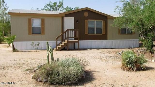 26979 E Orville Street, Florence, AZ 85132 (MLS #6299439) :: Elite Home Advisors