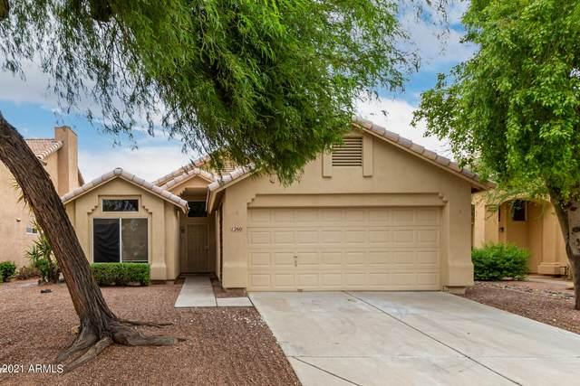1260 E Cindy Street, Chandler, AZ 85225 (MLS #6299440) :: The Daniel Montez Real Estate Group