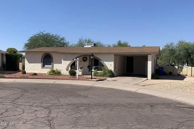 2218 E Gretta Place, Phoenix, AZ 85022 (#6299472) :: AZ Power Team
