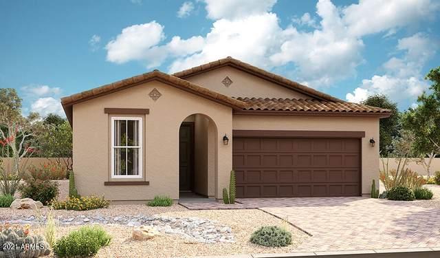 15663 W Jackson Street, Goodyear, AZ 85338 (MLS #6299478) :: Service First Realty